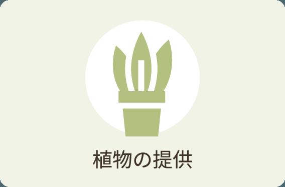 植物の提供
